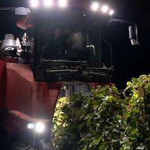 Noćna berba grožđa (Foto: Dnevnik.hr) - 3