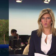 Reporter Dnevnika Nove TV Domagoj Mikić o stravičnom ubojstvu na Kajzerici (Video: Vijesti Nove TV u 14)