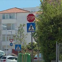 Tornjaci izgrizli djevojčicu u Splitu (Video: Dnevnik Nove TV)