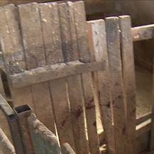 Afrička svinjska kuga sve bliže (Video: Dnevnik Nove TV)