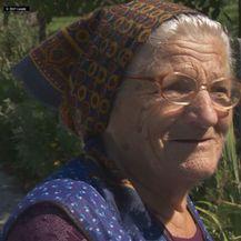 Ana Bingula (Foto: Dnevnik.hr)
