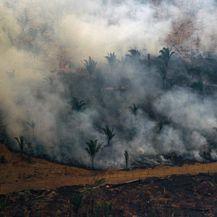 Požar u Amazoni (Foto: AFP)