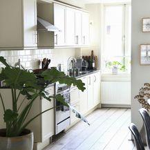 Ukrasno sobno bilje izgleda vrlo efektno i u kuhinji - 10