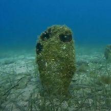 Izumiranje periski i morskih kornjača - 8