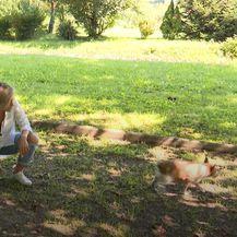Nika Fleiss sa svojim psima - 10