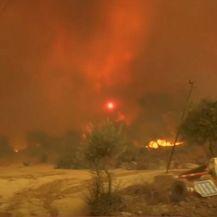 Velik požar u Turskoj - 5