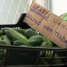 Samoposlužni štand s lubenicama - 3