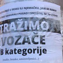 Osijek slavi (Foto: Dnevnik.hr) - 3