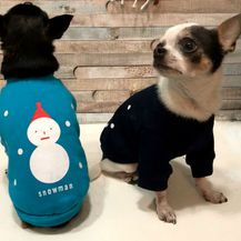 Jaknice za psiće u plavoj i crnoj boji (Foto: Zadovoljna.hr)