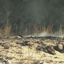 Smirivanje požara u Kaliforniji (Foto: Dnevnik.hr) - 4