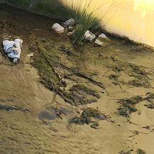 Drniški suživot s kanalizacijom (Foto: Dnevnik.hr) - 5