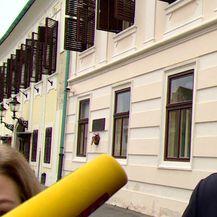 Tolušić o radu Vlade (Video: Dnevnik.hr)