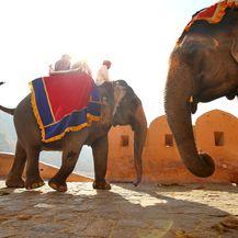 Jahanje na slonovima