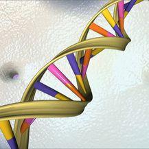DNK (Foto: AFP)