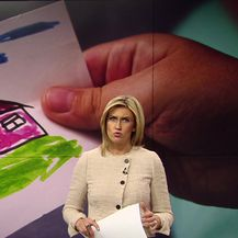 Hrvatski sabor usvojio zakon o udomiteljstvu (Video: Vijesti u 17 h)