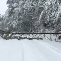 Snježna oluja pogodila jugoistok SAD-a (Video: Reuters)