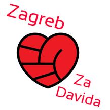 Zagreb za Davida (Foto: Podrška \