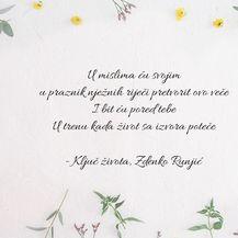 Najljepši stihovi iz pjesama Olivera Dragojevića - 9