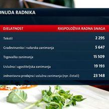 Nedostatak radne snage (Foto: Dnevnik.hr) - 1