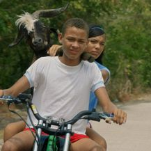Koza nesrećonoša(Foto: KinoKino)