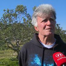 Zlatko Burić, predsjednik maslinarske udruge Zlatna Šoltanka (Foto: Dnevnik.hr)