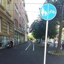 Biciklistička staza u Savskoj (Foto: Sindikat biciklista)