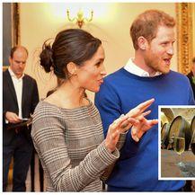 Princ Harry, Meghan Markle (FOTO: Getty/Pixell)