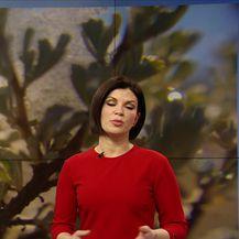 Vremenska prognoza Ane Bago Tomac (Video: Dnevnik Nove TV)