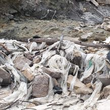 Bujica odnijela tone smeća s odlagališta Lakota u Istri (Foto: Građanska inicijativa \