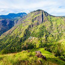 Vrh Adam, Šri Lanka