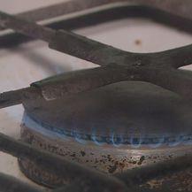 Plin (Foto: Dnevnik.hr)