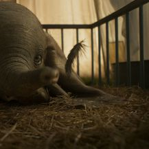 Scene iz Disneyjevog filma \'Dumbo\' o slavnom letećem sloniću - 5