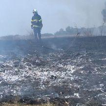 Posljedice nekontroliranog paljenja vatre (Foto: Dnevnik.hr) - 1