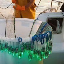 LED žaruljice kao alat kojim se sprječava zapletanje kornjača u ribarske mreže (Foto: Draško Holcer)