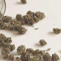 Marihuana, ilustracija