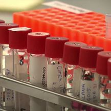 Koronavirus: Stižu novi sojevi, rastu brojke - 4