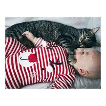Sin Petre Kurtele (FOTO: Instagram)