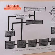 Dječji vrtići u Dubrovniku pokreću akcijski plan (Foto: Dnevnik.HR) - 2