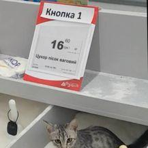 Kupci iz pakla (Foto: brightside.me) - 14