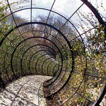 Otrovni vrt - 5