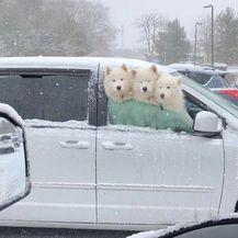 Zimske radosti (Foto: Instagram) - 13
