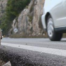 Stijene sa Srđa (Foto: Dnevnik.hr) - 3