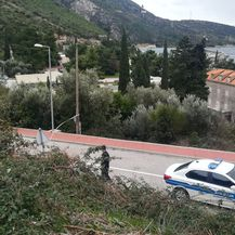 Požar kod Dubrovnika (Foto: Dnevnik.hr)