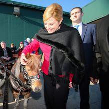 Predsjednica i konji (Foto: Filip Kos/Pixsell)