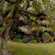 Prava \'Hobit\' kućica u kojoj živi umirovljenik Stuart Grant - 6