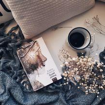 Knjige za zimu - 3