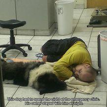 Najbolji prijatelji (Foto: izismile.com) - 15