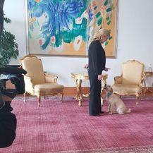 Predsjednica s kujicom Kikom (Foto: Dnevnik.hr) - 4