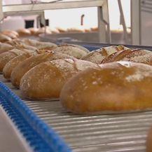 Kruh, ilustracija - 3