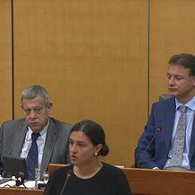 Ivana Ninčević-Lesandrić: Marić je utjecao na članove NO da daju Agrokoru kredit (Video: Dnevnik.hr)